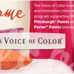 PPG Pittsburgh Paints &#8211; &#8220;Wow Color Now&#8221; for Home Decor
