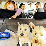 Guest Blogger: How to Enjoy Family Road Trips this Year