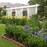 Guest Blogger: How to Care for Your Garden on a Tight Budget