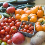 Guest Blogger: How to Grow Organic Vegetables this Summer