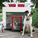 Guest Blogger: How to Choose the Best Spot for your Dog House