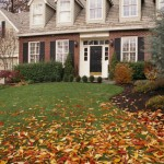 Guest Blogger: Preparing your Autumn Lawn for a Pest-Free Winter