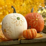No-Carve Pumpkin Ideas for Kids & Adults to Dress Up your Halloween Decor