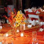 Guest Blogger: How to Expertly Plan and Organize a Large Autumn Party