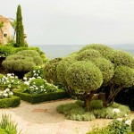 Guest Blogger: Eye-Catching Landscape Ideas for Year Around Curb Appeal
