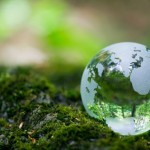 Earth Day 2010 &#8211; How can you make a difference?