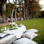 Guest Blogger: Preparing your Lawn for Warm Weather Entertaining