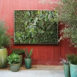 How to Beautify your Small Patio with a Vertical Garden