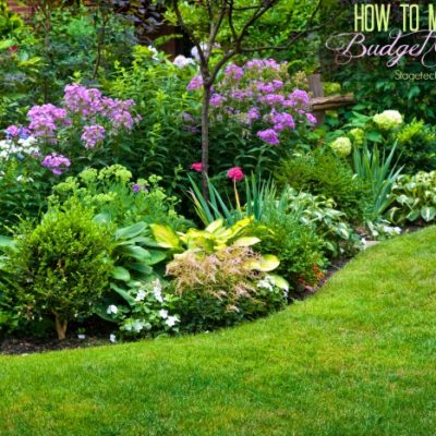 How to Maintain your Budget Garden this Season
