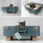 Guest Blogger: How to Make Your Own Recycled Pet Bed