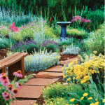 Enhancing your Home's Walkway with Ornamental Plants