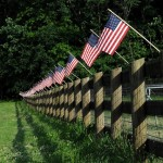 Tips for Celebrating Fourth of July in an Eco-Friendly Way
