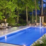 Guest Blogger: Keeping Unwanted Pests Out of Your Backyard Pool