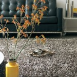 Guest Blogger: How to Choose a Warm Bedroom Rug this Cold Winter