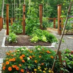 Guest Blogger: How to Design a Beautiful Vegetable Garden