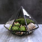 How to Make a Succulent Terrarium Tutorial