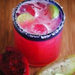 Prickly Pear Margarita Recipe &#8211; Celebrate National Margarita Day!
