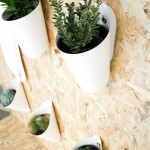Decorating Ideas for DIY Recycled Planters
