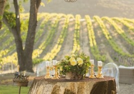 Travel: Tips for Attending an Inspiring Wine Tasting Tour