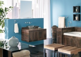 Guest Blogger: The Bathroom Conundrum: Fashion or Function?