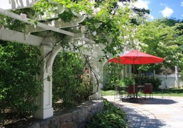 DIY Summer Idea: How to Build an Arbor for your Backyard