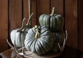 Simple Autumn Home Decorating Ideas this Season