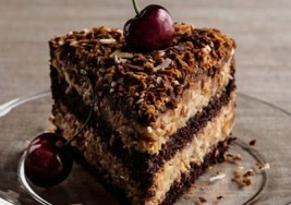 Double Chocolate German Chocolate Cake Recipe