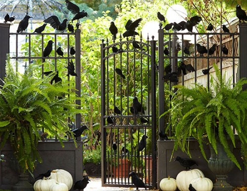 Last Minute Outdoor Decorations for your Halloween Porch