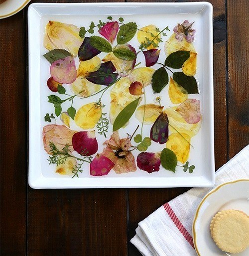 Easy DIY Crafts: Pressed Flowers Inspired by Spring