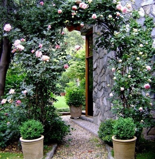 Beautiful Garden Path Ideas