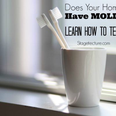 Home Maintenance: Your Home May Need Mold Removal