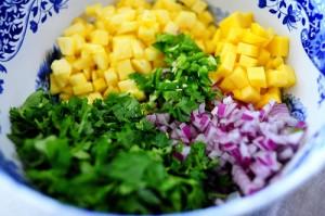 mango salsa_cilantro_lime_Pwoman