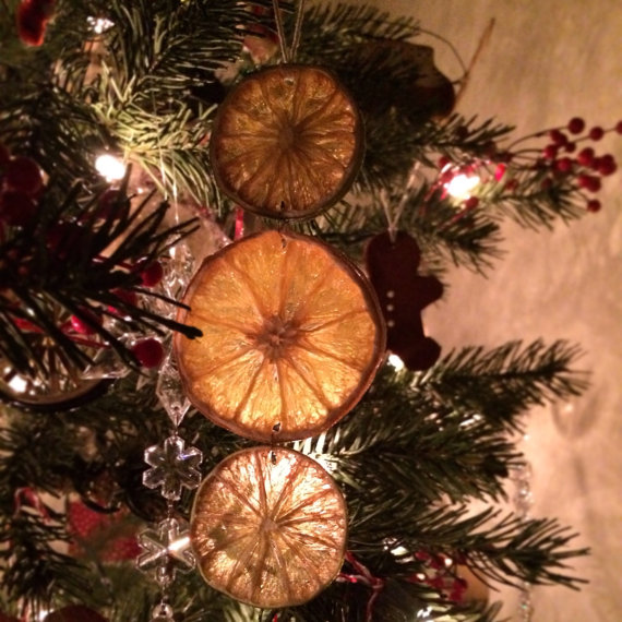 dried-fruit-ornaments-ideas