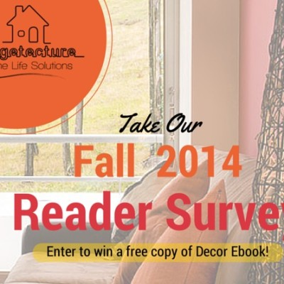 Take Stagetecture Reader Survey: Free Copy of My Ebook