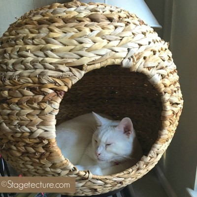Finally Cat Furniture My Cat Loves by Sauder Pet Home