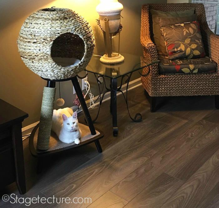 Cat Furniture Sauder Home final