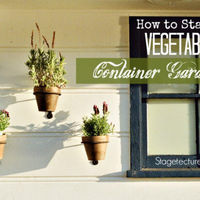 Container Gardening: How to Start a Vegetable Garden
