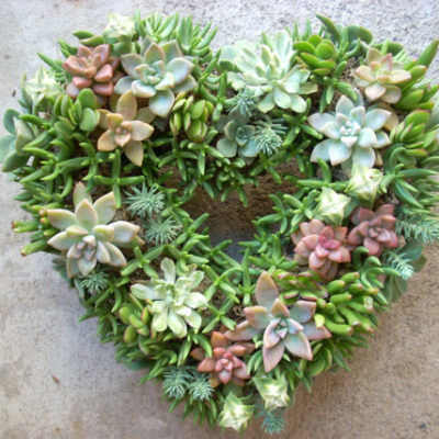 Wedding Flowers: How to Feature Succulents in your Decorations