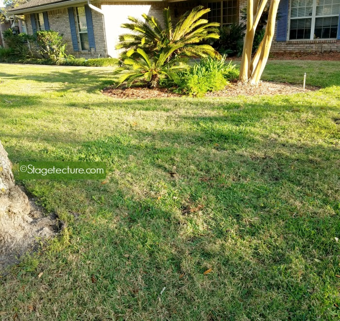lawn care roundup lawns 3