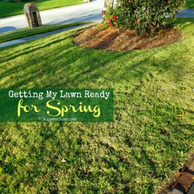 Getting My Lawn Care Ready for Spring with Roundup® for Lawns
