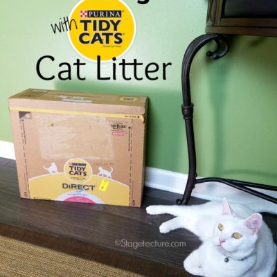 How I Saved Time Cleaning My Cat Litter Box With Tidy Cats Direct