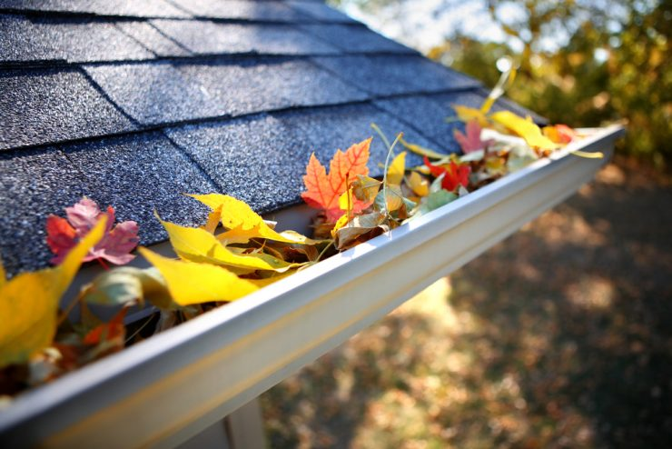 How to Prevent Gutter Clogging